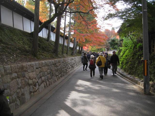 12-koyo-kyoto8.JPG