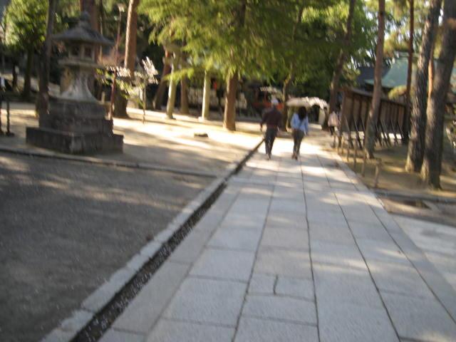 12-sakura-kyoto103.JPG