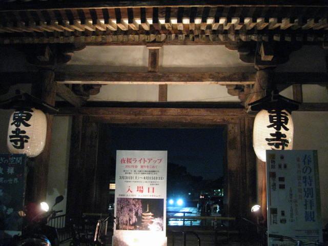 12-sakura-kyoto146.JPG
