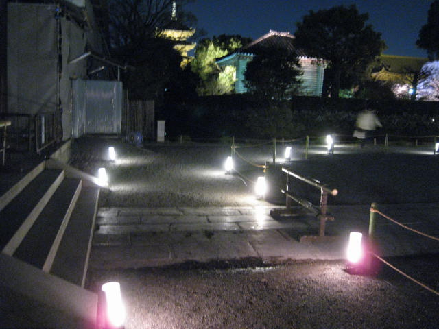 12-sakura-kyoto149.JPG