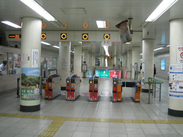 12-sakura-kyoto15.JPG