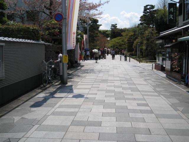 12-sakura-kyoto173.JPG