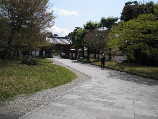 12-sakura-kyoto175.JPG