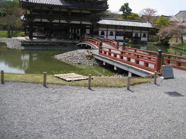 12-sakura-kyoto180.JPG