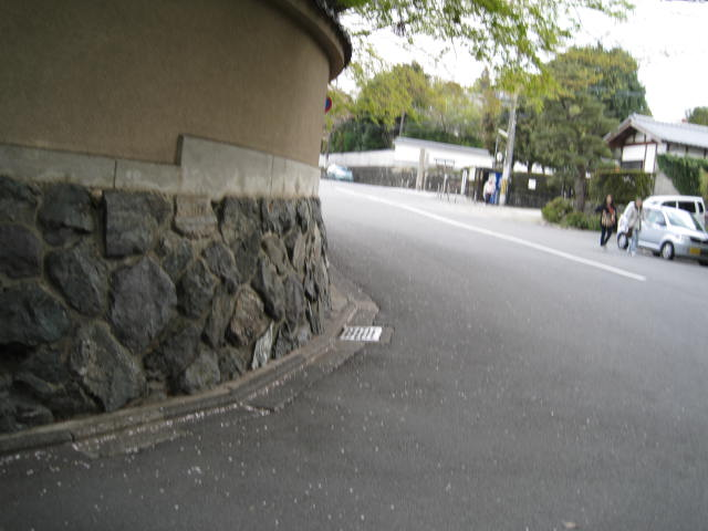 12-sakura-kyoto191.JPG