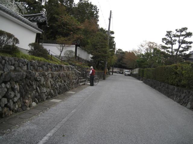 12-sakura-kyoto193.JPG