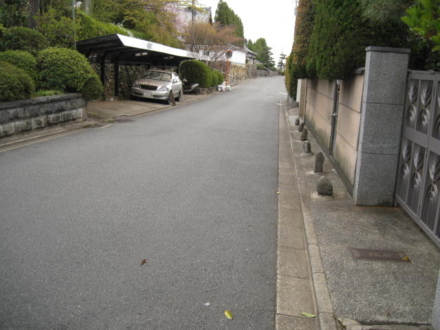 12-sakura-kyoto198.JPG