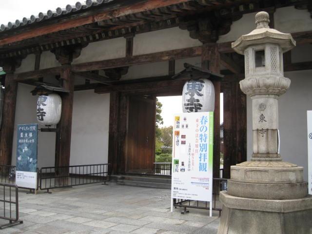 12-sakura-kyoto208.JPG