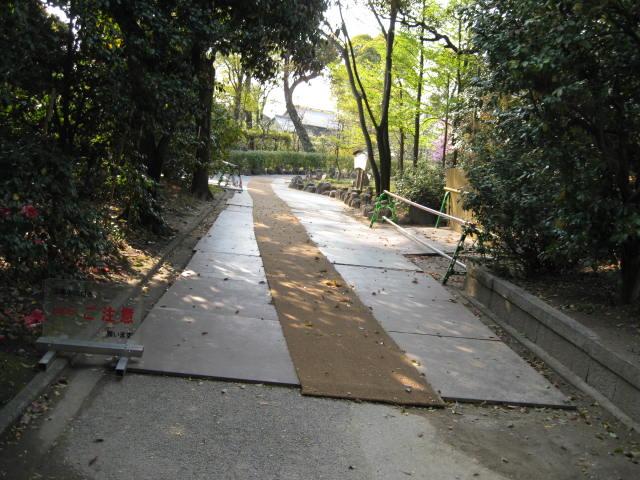12-sakura-kyoto232.JPG