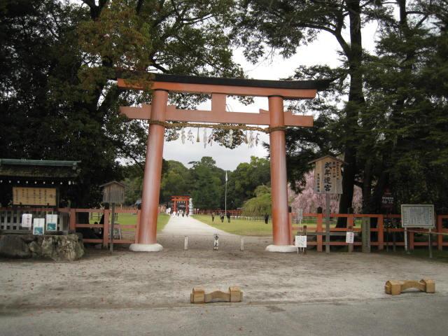 12-sakura-kyoto263.JPG