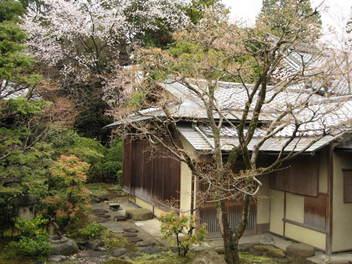12-sakura-kyoto32.JPG