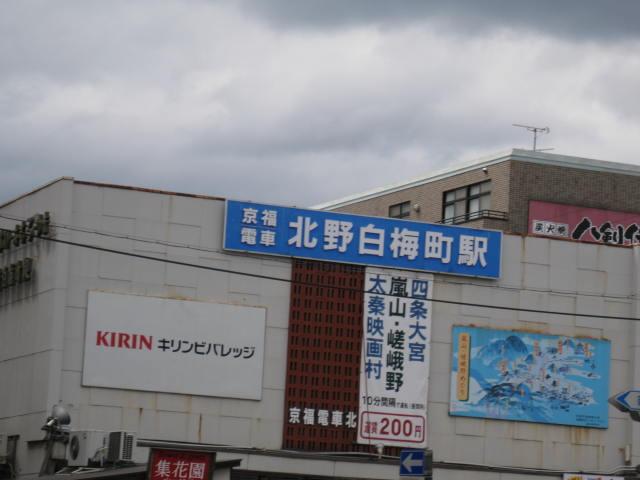 12-sakura-kyoto322.JPG