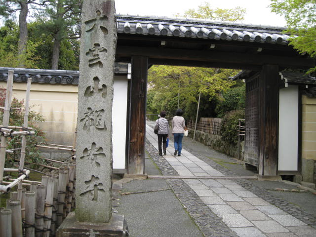 12-sakura-kyoto330.JPG