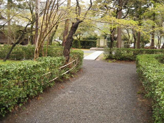 12-sakura-kyoto34.JPG