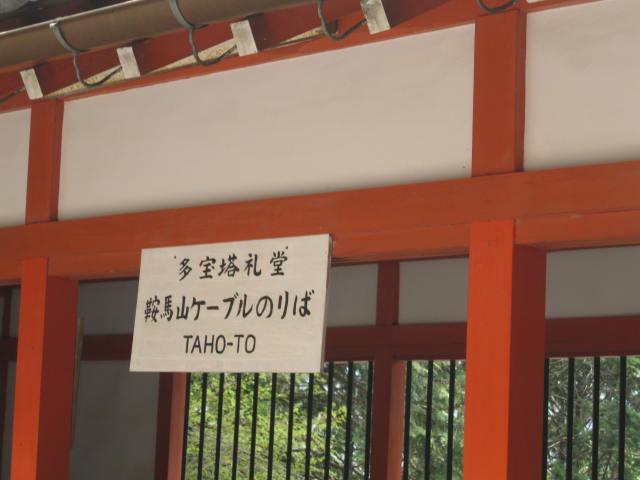 12-sakura-kyoto417.JPG