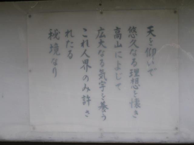 12-sakura-kyoto427.JPG