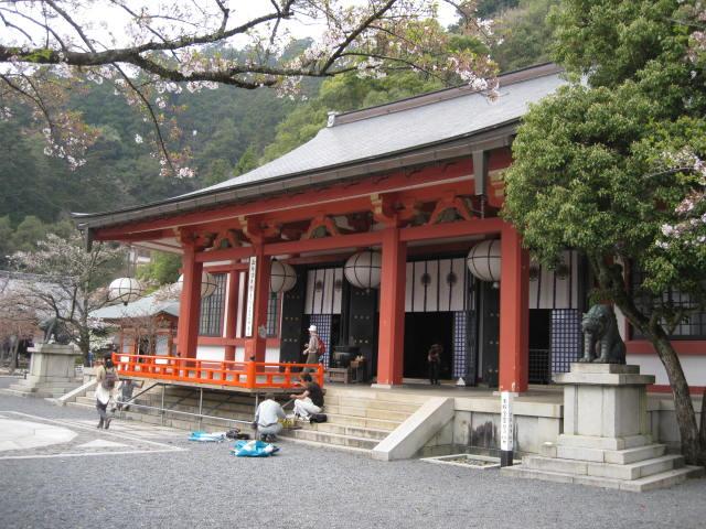 12-sakura-kyoto433.JPG
