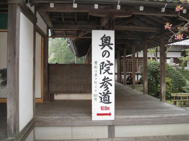 12-sakura-kyoto439.JPG