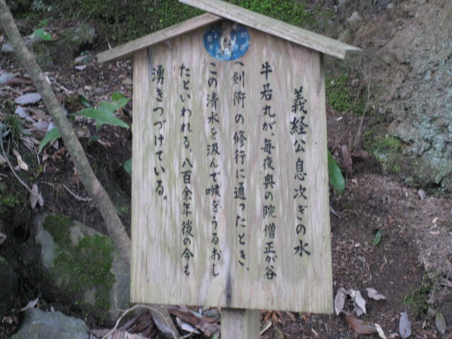 12-sakura-kyoto454.JPG