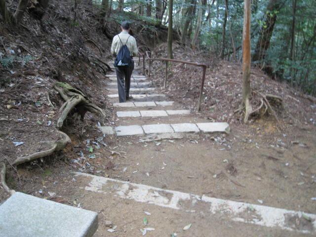 12-sakura-kyoto463.JPG