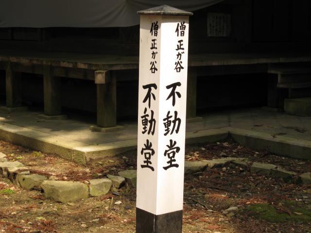 12-sakura-kyoto467.JPG