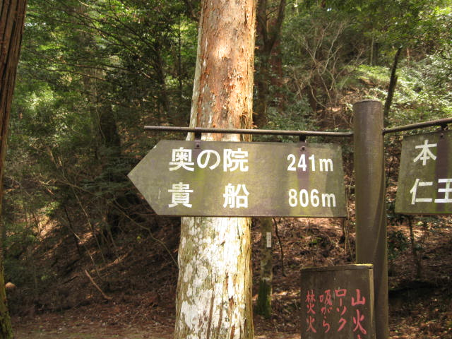 12-sakura-kyoto470.JPG
