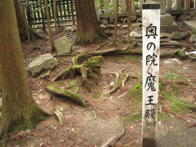 12-sakura-kyoto476.JPG