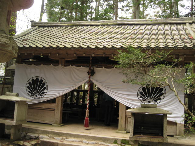 12-sakura-kyoto477.JPG