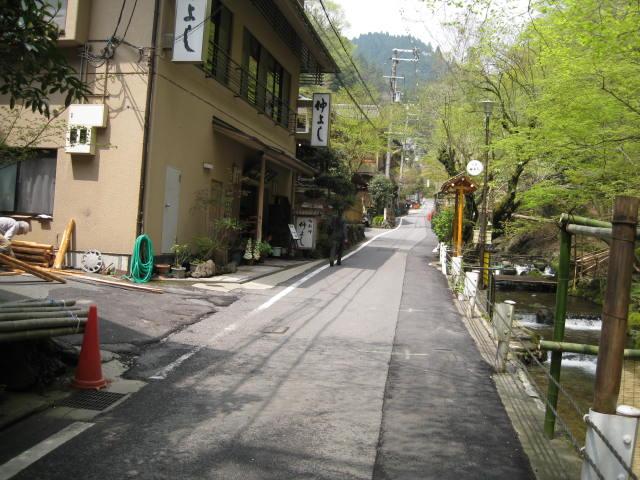 12-sakura-kyoto512.JPG