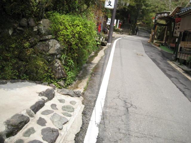 12-sakura-kyoto517.JPG