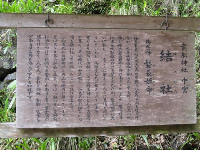 12-sakura-kyoto518.JPG