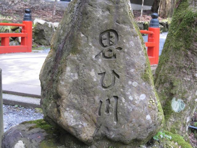 12-sakura-kyoto523.JPG