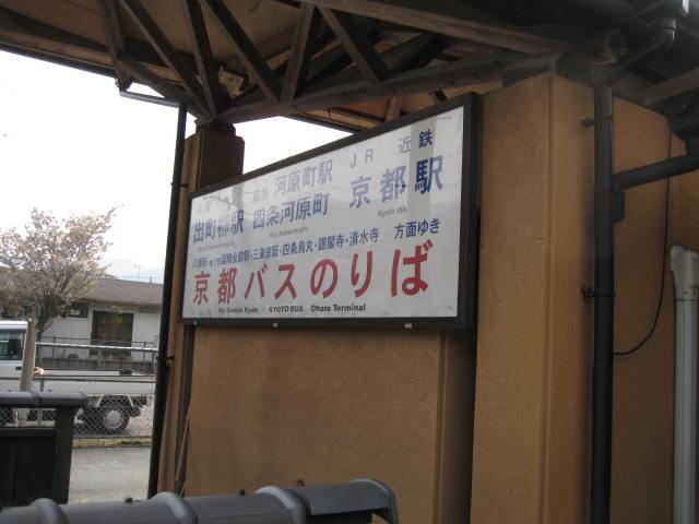12-sakura-kyoto544.JPG