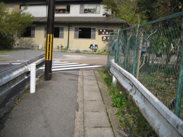 12-sakura-kyoto545.JPG