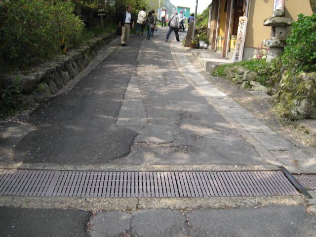 12-sakura-kyoto547.JPG