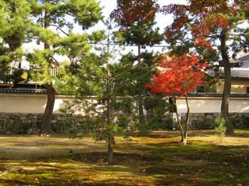 13-koyo-kyoto22.JPG