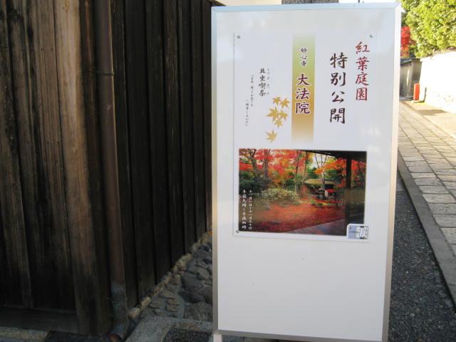 13-koyo-kyoto76.JPG