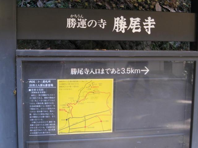 13-koyo-mino27.JPG