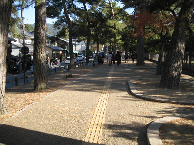 13-koyo-nara14.JPG