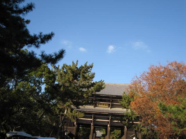 13-koyo-nara23.JPG