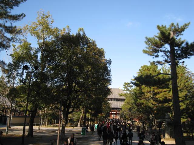 13-koyo-nara24.JPG