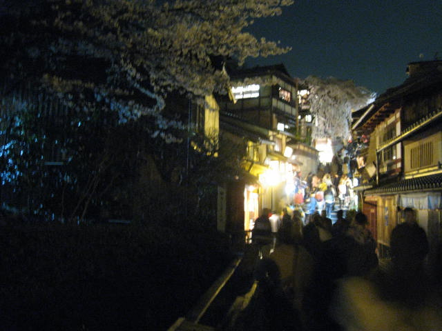 13-sakura-kyoto143.JPG