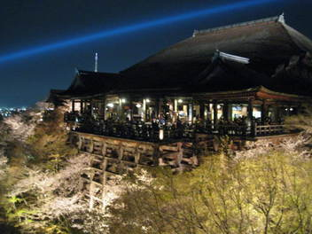 13-sakura-kyoto157.JPG