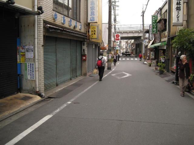 13-sakura-kyoto173.JPG