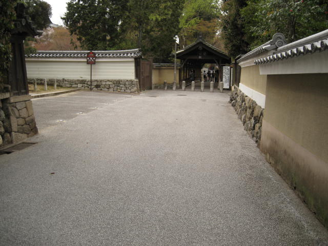 13-sakura-kyoto176.JPG