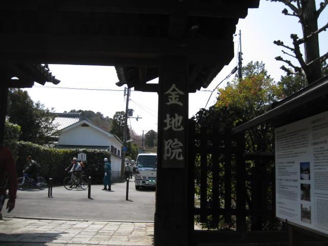 13-sakura-kyoto18.JPG