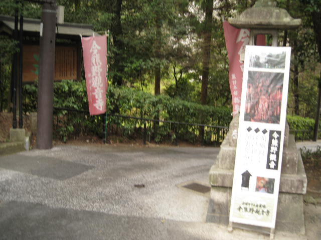 13-sakura-kyoto228.JPG
