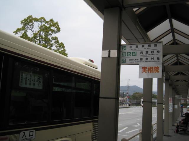 13-sakura-kyoto239.JPG