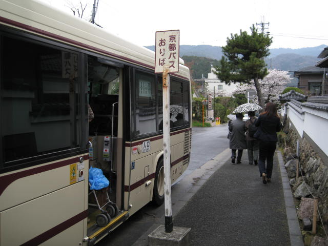 13-sakura-kyoto240.JPG