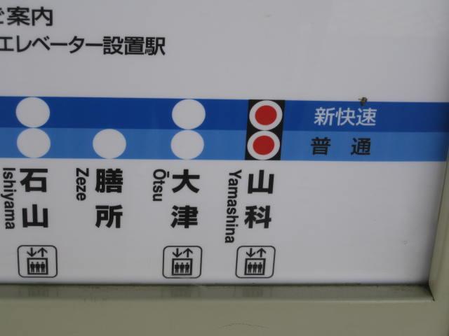 13-sakura-kyoto3.JPG